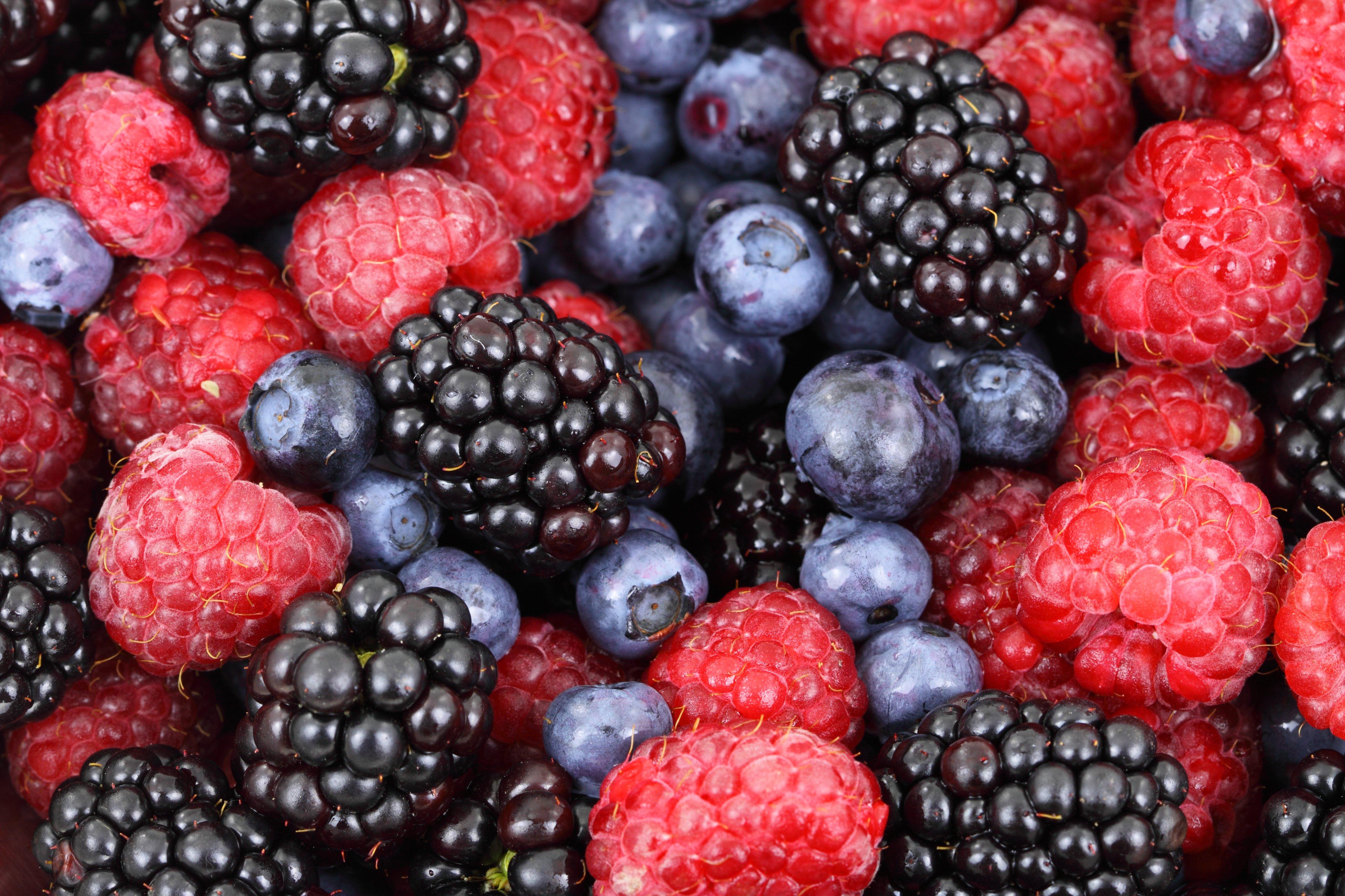 Carpers Gin Frutas del bosque